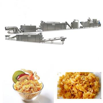 Kellogs Corn Flakes Production Line