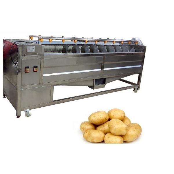 100 Kg Per Hour Potato Chips Crisps/Frozen French Fries Frying Making Machine