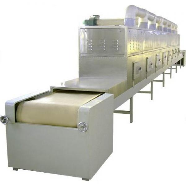 Stainless Steel Belt Channel Dryer